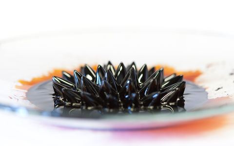 Flickr Photo Download: Ferrofluid