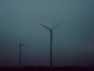 Flickr Photo Download: Windmills