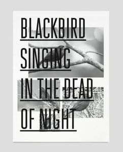 Blackbird — Trend List