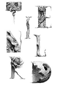 Tendril Typeface Study - Tendril Blog