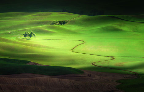 "500px   Photo ""Shadows and Light"" by Jesse Summers"