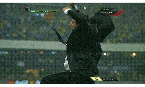 Miguel Herrera, Mexico: Meet the most GIF-worthy man at the World Cup.