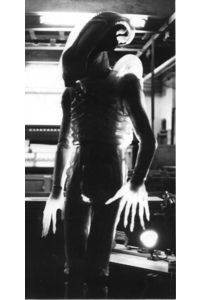 Flickr Photo Download: Translucent Alien Costume