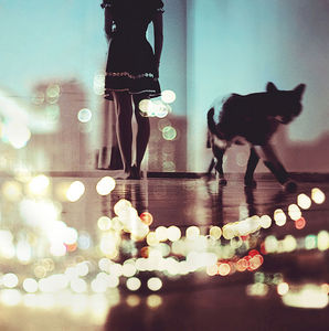 city lights on Flickr - Photo Sharing!