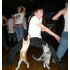 dance cats.jpg 452×480 pixels