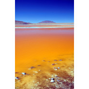Laguna Colorada Red Lagoon, Bolivia  Flickr - Photo Sharing